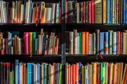 Wenn ich Zeit hätte, würde ich den Großteil des Tages mit lesen verbringen!