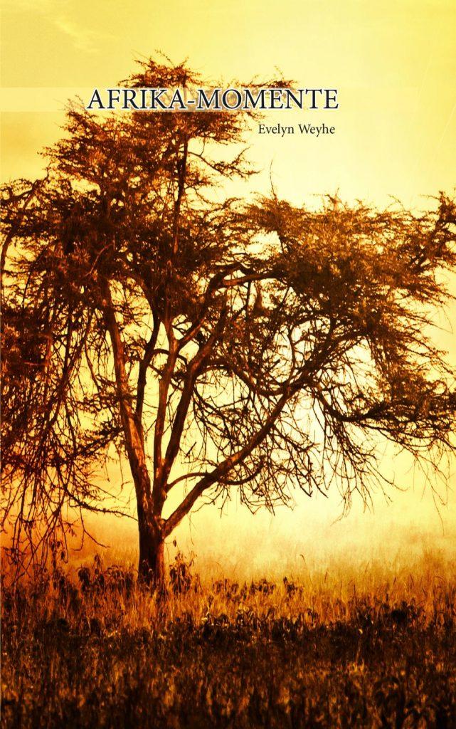 Buchcover Afrika Momente