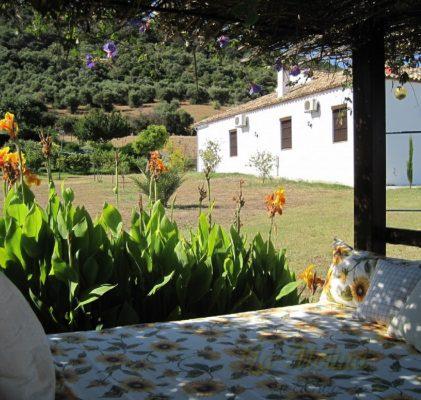Hacienda La Molina